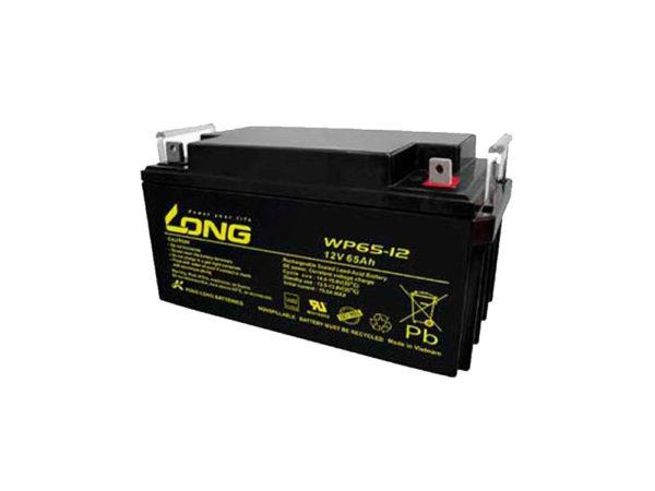 باتری یو پی اس لانگ 65 آمپر LONG WP 12V-65A UPS battery